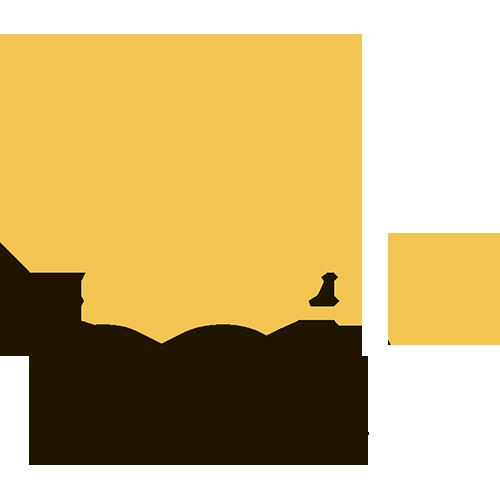 Обзор букмекера MELbet