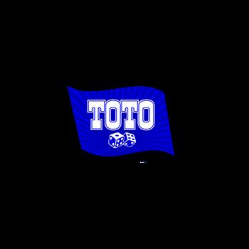 Обзор Тотобет